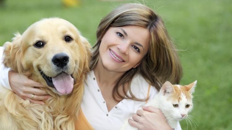 Kediler ve köpekler hakkında ilginç bilgiler