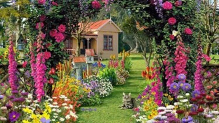 Bahçe ve Balkonlar için 10 Yaz Çiçeği!