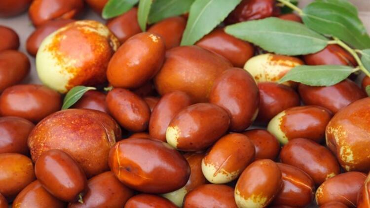 Hünnap Nedir? Hünnap Meyvesinin Bilinmeyen Faydaları