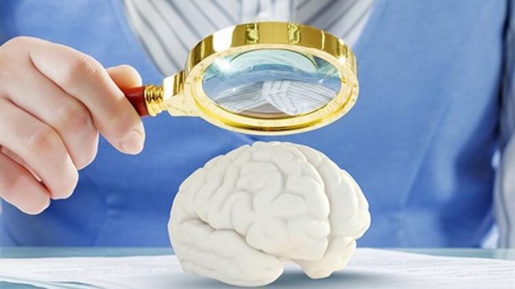 Erkek ve Kadın Beyinleri Nasıl Çalışır?