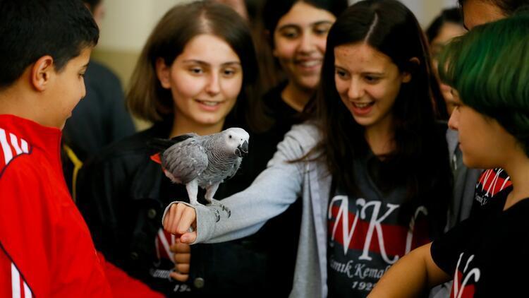 Bu okulda ilk ders hayvan sevgisi