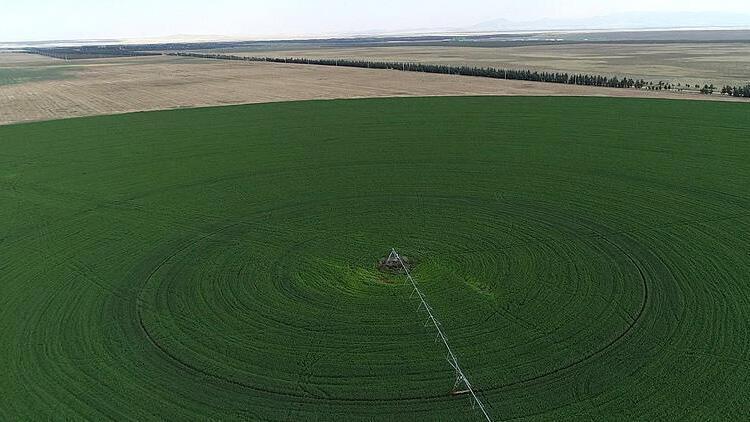 Atıl tarım alanları için arazi bankacılığı çözümü
