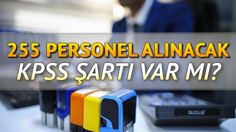 YSK personel alımı başvuruları başlıyor! YSK personel alımı başvuru şartları neler?
