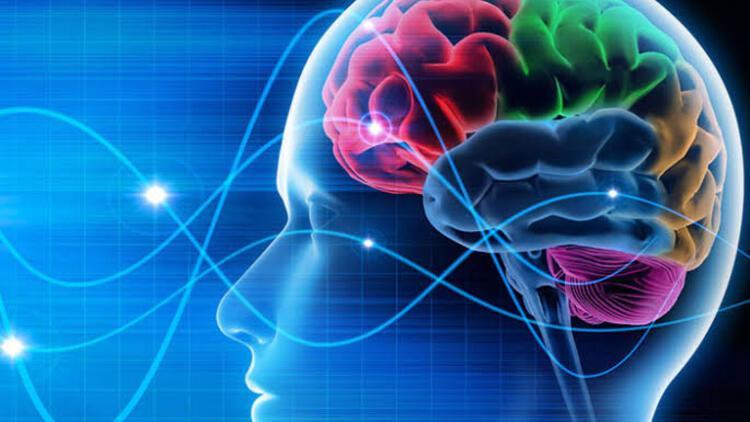 Beynin çok çalışması ömrü kısaltıyor