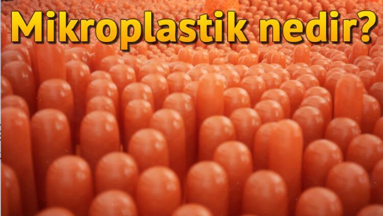 Mikroplastik nedir?