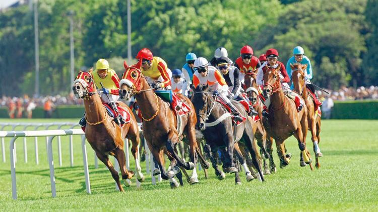 Varlık Fonu'ndan at yarışı hamlesi