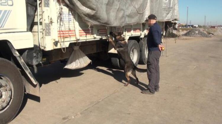 Diyarbakır'da 489 kilo esrar ele geçirildi