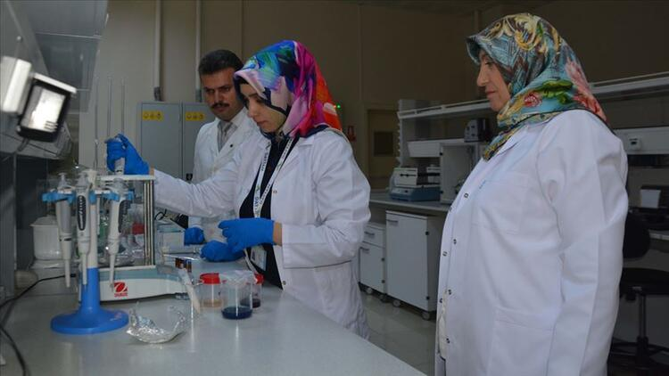 Atatürk Üniversitesi'nden akademisyenler 'çaşır'dan krem üretti