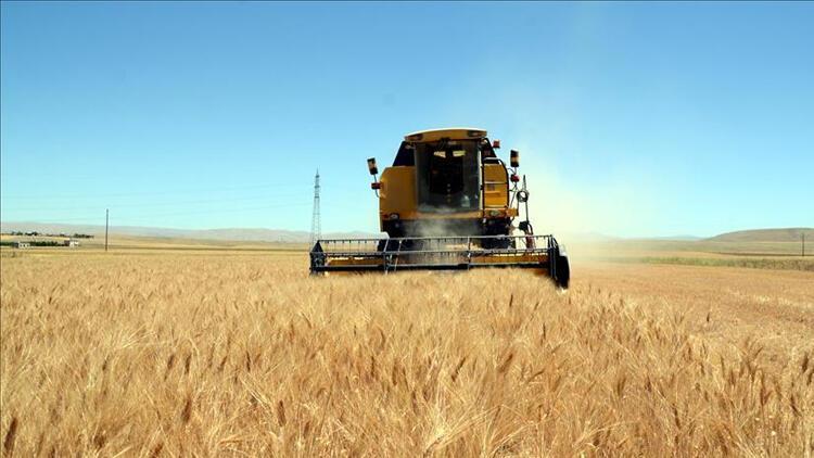 İç Anadolu çiftçisi Hububat Ticaret Merkezi ile daha karlı satış yapacak