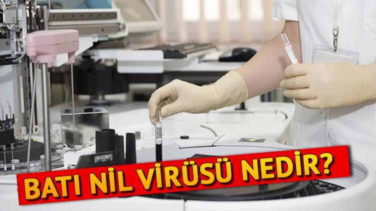 Batı Nil Virüsü nedir nasıl bulaşır? İşte Batı Nil Virüsü belirtileri