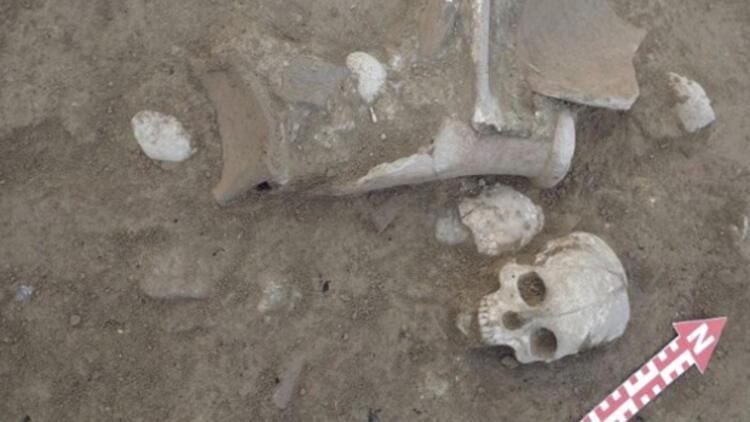 Şapinuva Antik Kenti'nde 3500 yıllık insan kafatası ve uyluk kemiği bulundu