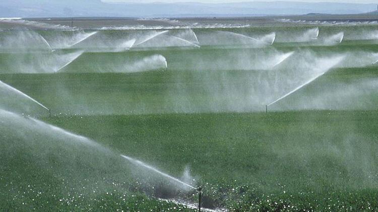 Ankara'da sulama 119 milyon lira katkı getirdi