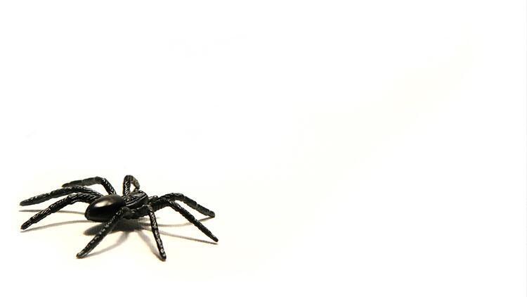 Rüyada örümcek görmek ne anlama gelir? Rüyada örümcek ağı görmenin anlamı