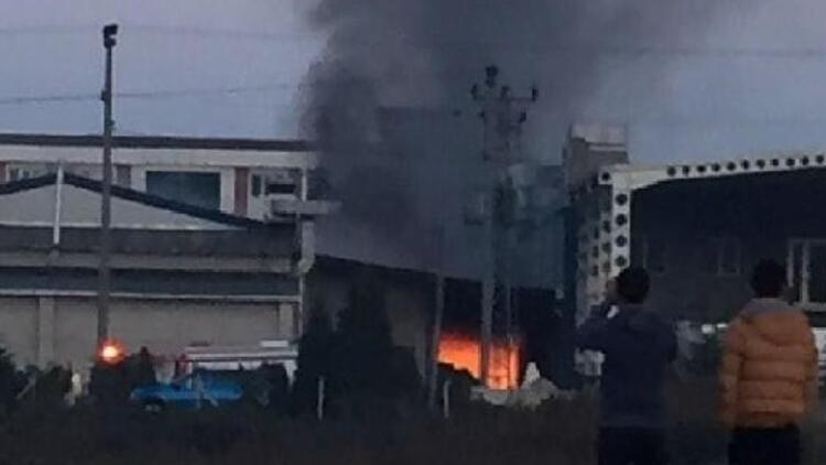 Son dakika haberleri: Fındık fabrikasında korkutan yangın