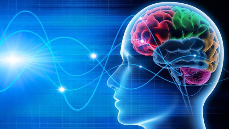 Nöropazarlama satın alma sürecini nasıl etkiliyor?