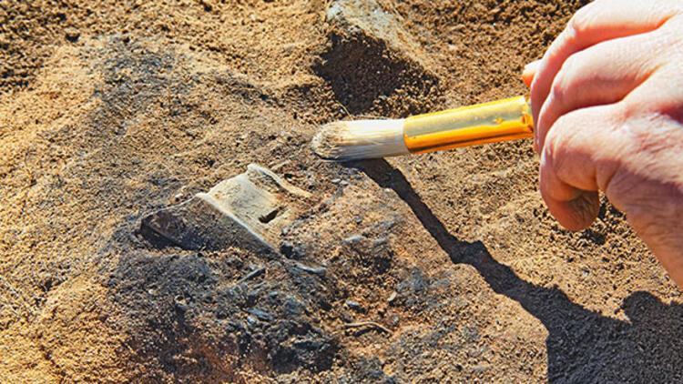 Denizli'de 8 farklı hayvan türüne ait fosil bulundu