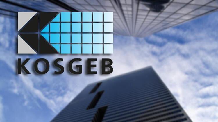 KOSGEB 6. KOBİ ve Girişimcilik Ödülleri sahiplerini buldu