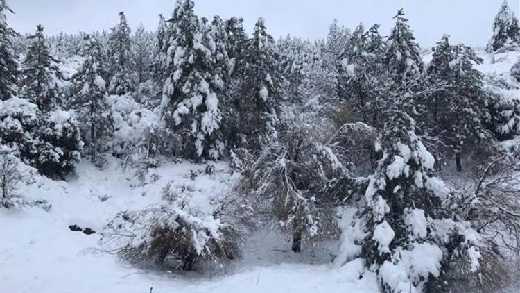 Mersin'in Çamlıyayla ilçesinde eğitime kar engeli