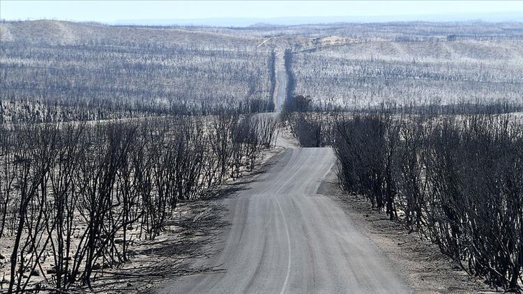 Avustralya yangınları tüm dünyayı saracak, yeni 'normal' olabilir