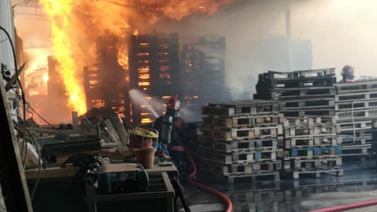 Sakarya'da ahşap palet fabrikasında yangın