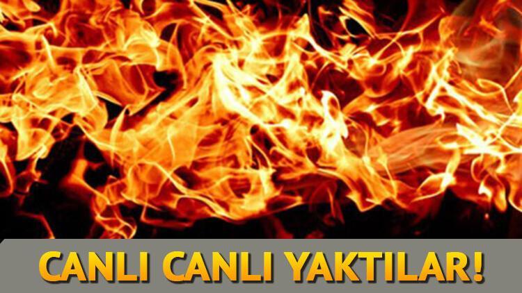 Mersin'de kan donduran cinayet! Canlı canlı yaktılar!