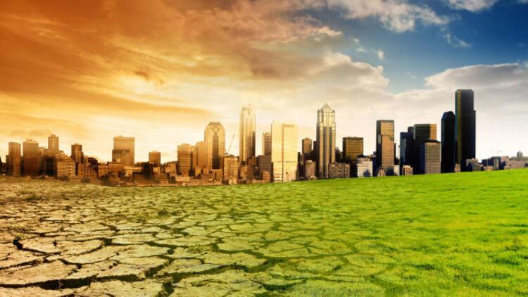 Küresel ısınma, kuşların göç takvimini etkiledi