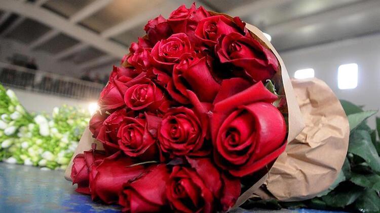 Sevgililer Günü için 60 milyon dal 52 ülkeye ihraç edildi