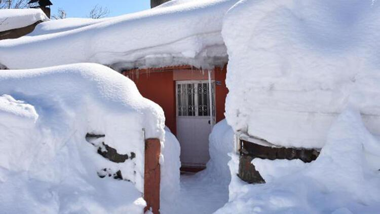 Bitlis'te kar kalınığı 2,5 metreyi buldu, evler kara gömüldü