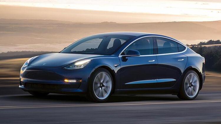 Tesla ormanı yok edecek