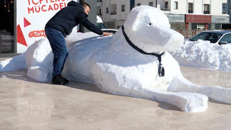 Sivas'ta 5 metrelik kardan kangal köpeği!