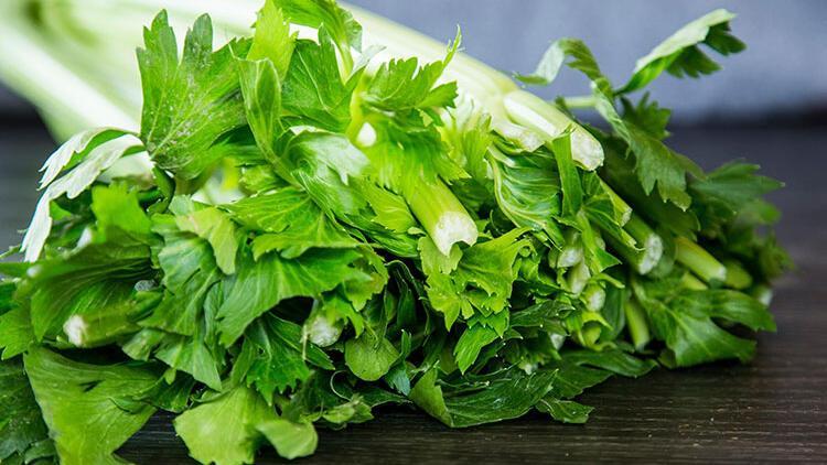 Kereviz yaprağı salatası nasıl yapılır? Evde kereviz yaprağı ...
