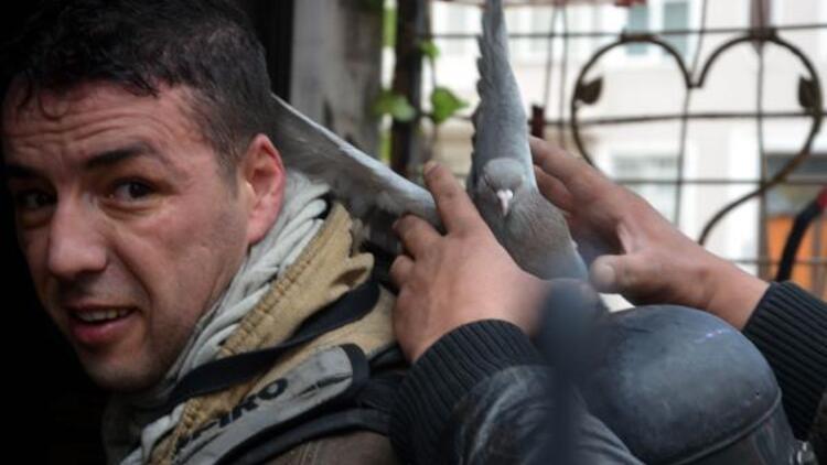 Avcılar'da itfaiye yaklaşık 300 kuşu yanmaktan kurtardı