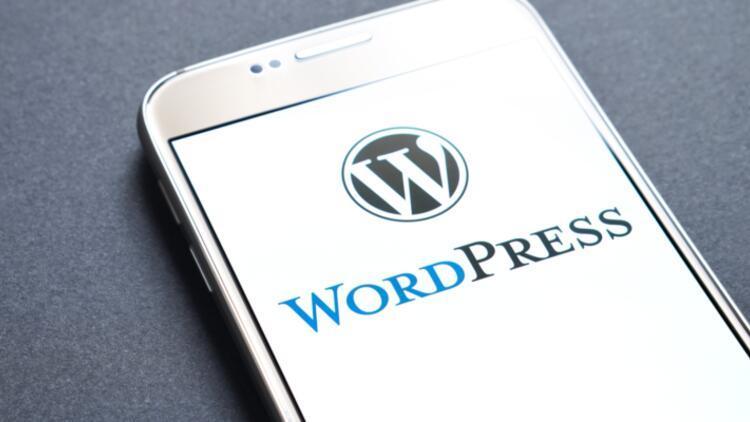 WordPress zirvesi WPFest 2020 sona erdi