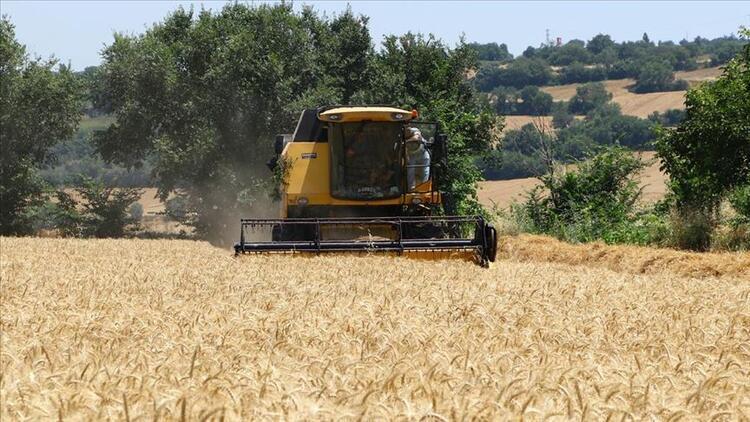 """""""8 ay yetecek un ve buğdayımız var"""""""