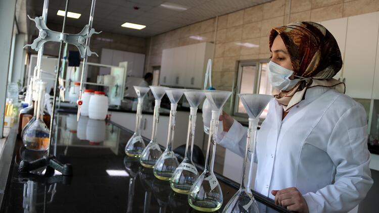 Şanlıurfa'da üretiliyor! Körfez ülkeleri, Avrupa ve ABD'ye satılıyor