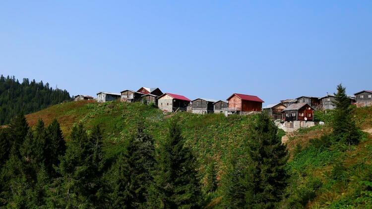 Bahar rotası Rize: Evimizden Karadeniz lezzetlerine yolculuk