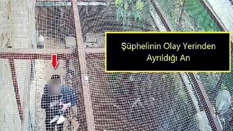 Gaziantep'te güvercin hırsızlığı şüphelisi tutuklandı