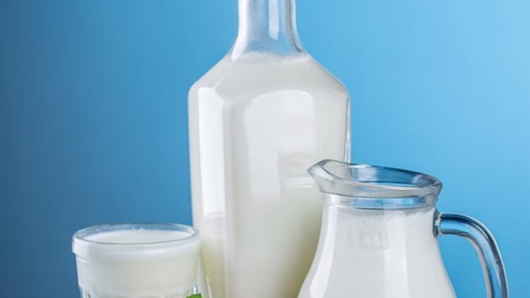 Başrol oyuncularım: Süt ve yoğurt