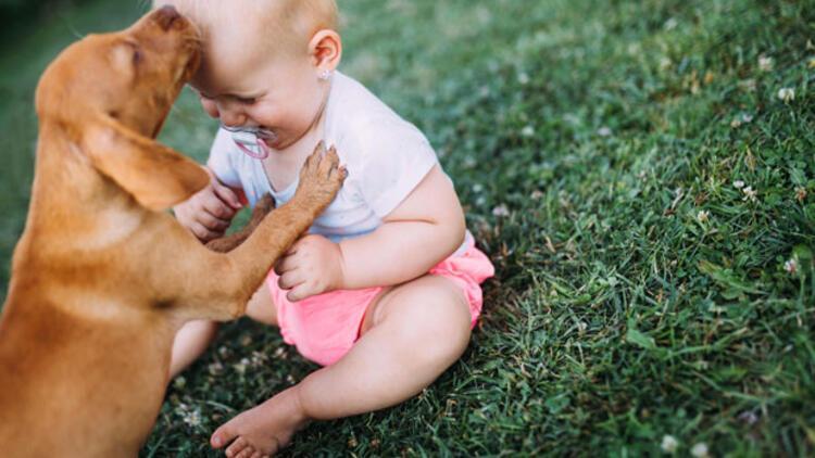Hayvan sevgisi ile büyümek çocuk gelişimine katkı sağlıyor