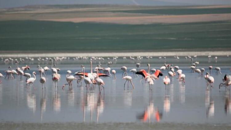 180 kuş türüne ev sahipliği yapan 'Düden Gölü' kurumaya yüz tuttu