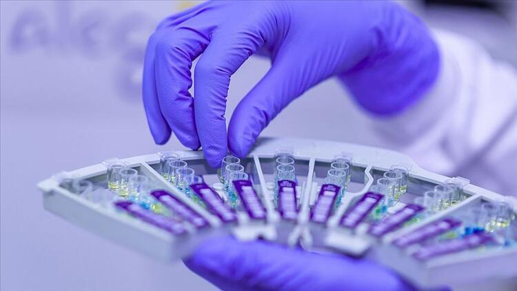 Corona virüs söylentileri gerçek mi? Verem aşısının etkisi var mı?