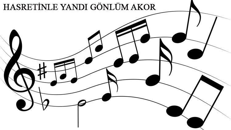 Edip Akbayram - Hasretinle Yandı Gönlüm akor ve gitar ritimleri