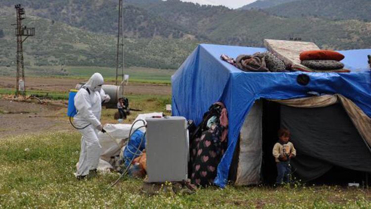 İslahiye'ye gelen 1500 mevsimlik tarım işçisi çadırlarında karantinada