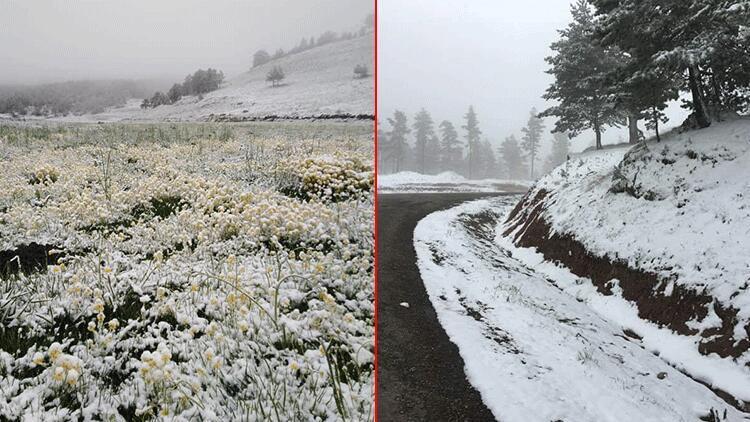 Mayıs ayında kar sürprizi! Bir günde sıcaklık 17 derece düştü