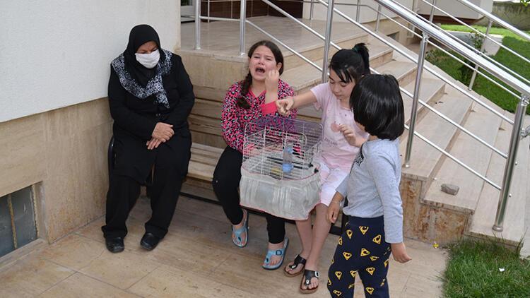 Yangın çıkan evlerinde muhabbet kuşu ölen Ekin'in gözyaşları