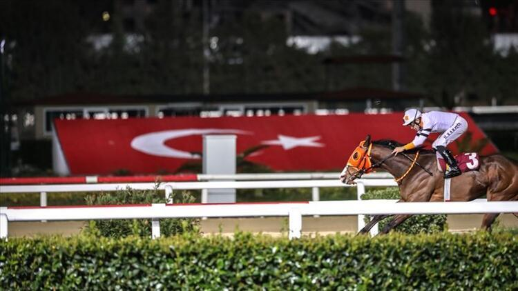 Son Dakika   At yarışları başlıyor! Tarih açıklandı