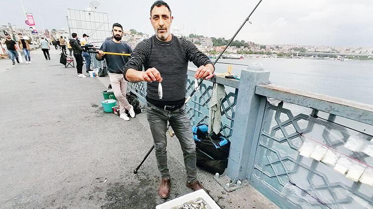 Oltalar balık doldu