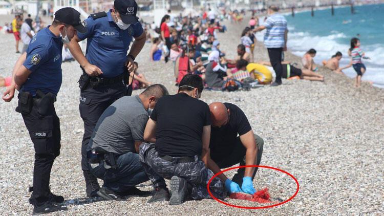 Antalya'da şaşırtan anlar! Denizde bulunan paketten bakın ne çıktı...