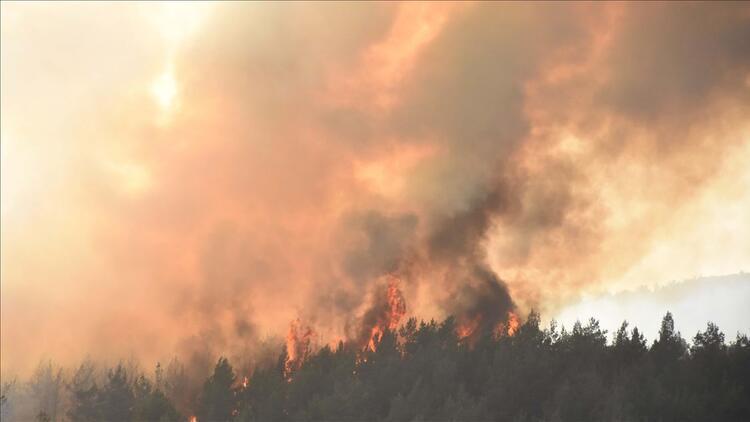 Tarım ve Orman Bakanlığı'ndan yangın söndürme atağı
