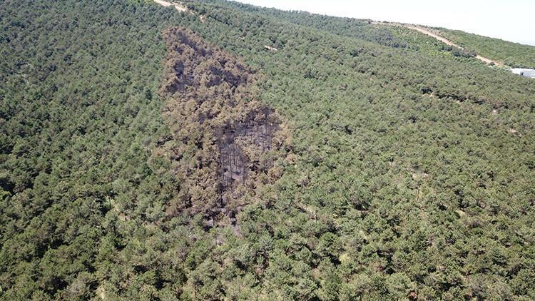 Kayışdağı'da yanan ormanlık alan havadan fotoğraflandı